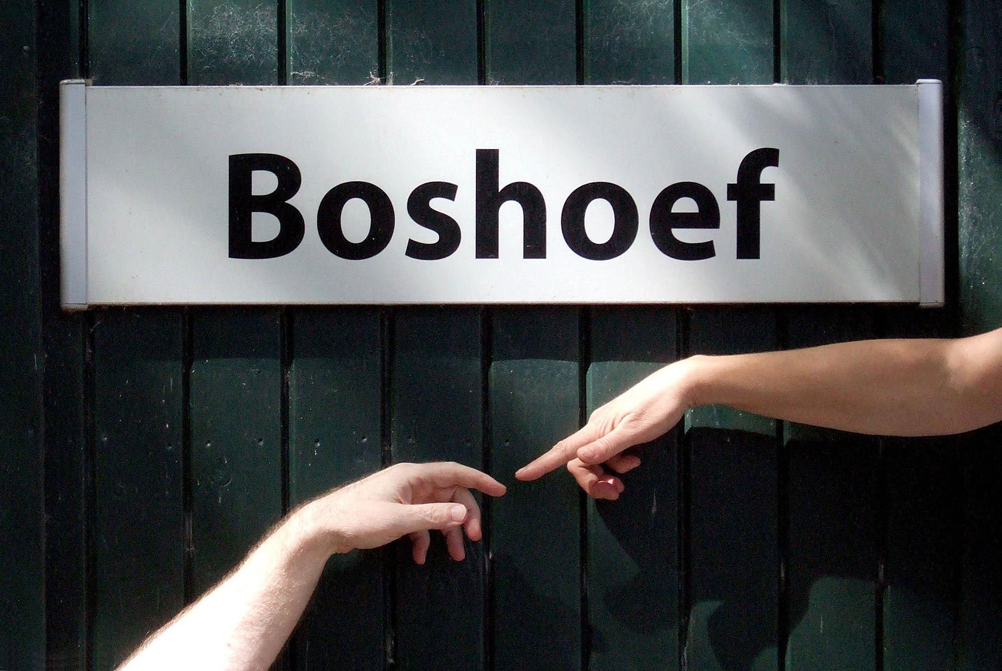 Creatieve Groeigroep Boshoef